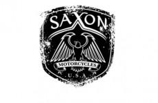 1BVR_allelogos_saxon
