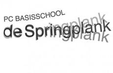 1BVR_springplank